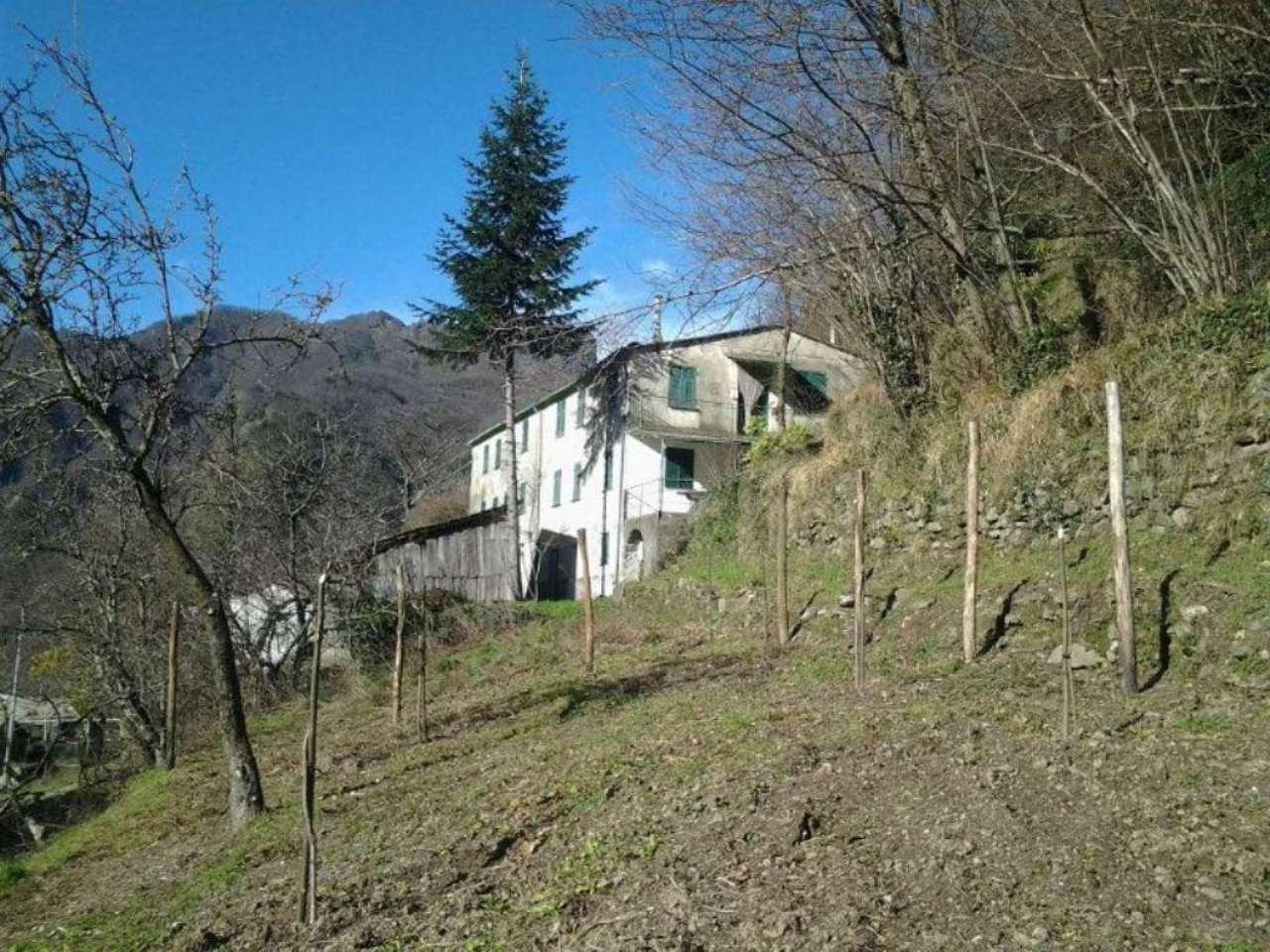 Soluzione Indipendente in vendita a Favale di Malvaro, 22 locali, prezzo € 49.000 | Cambio Casa.it