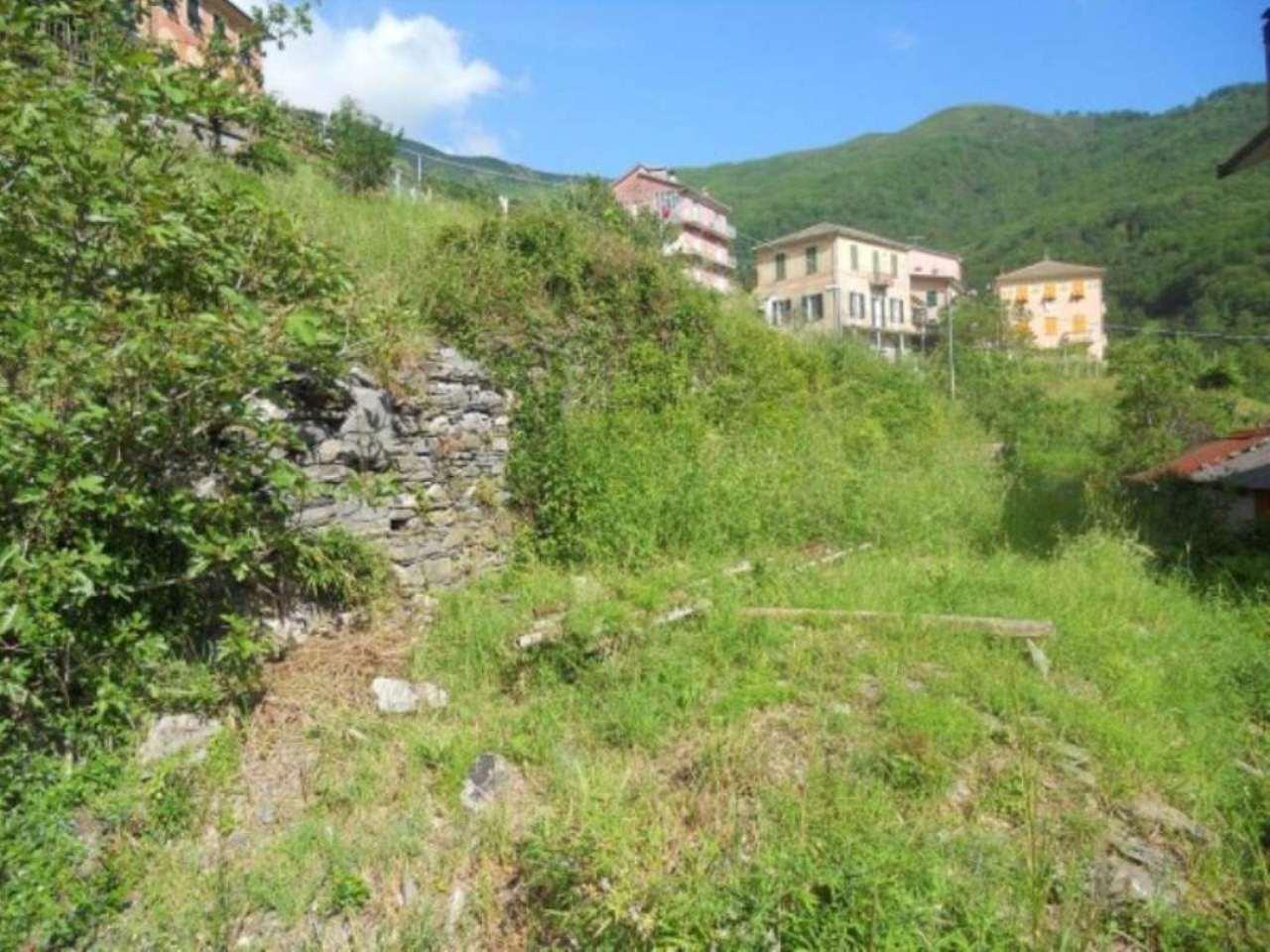 Terreno Edificabile Residenziale in vendita a Neirone, 9999 locali, prezzo € 60.000 | Cambio Casa.it