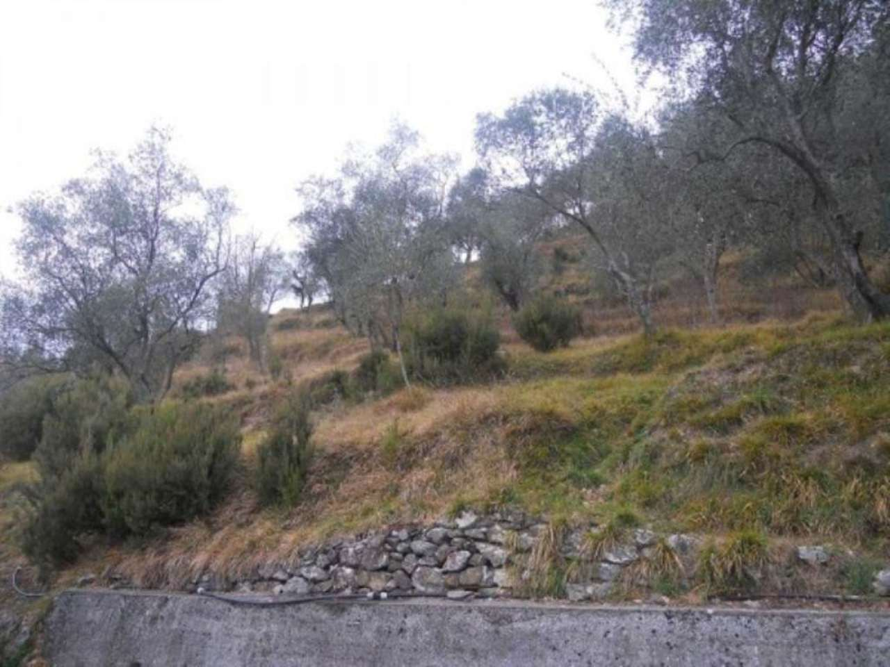 Terreno Edificabile Residenziale in vendita a Moconesi, 9999 locali, prezzo € 65.000 | Cambio Casa.it