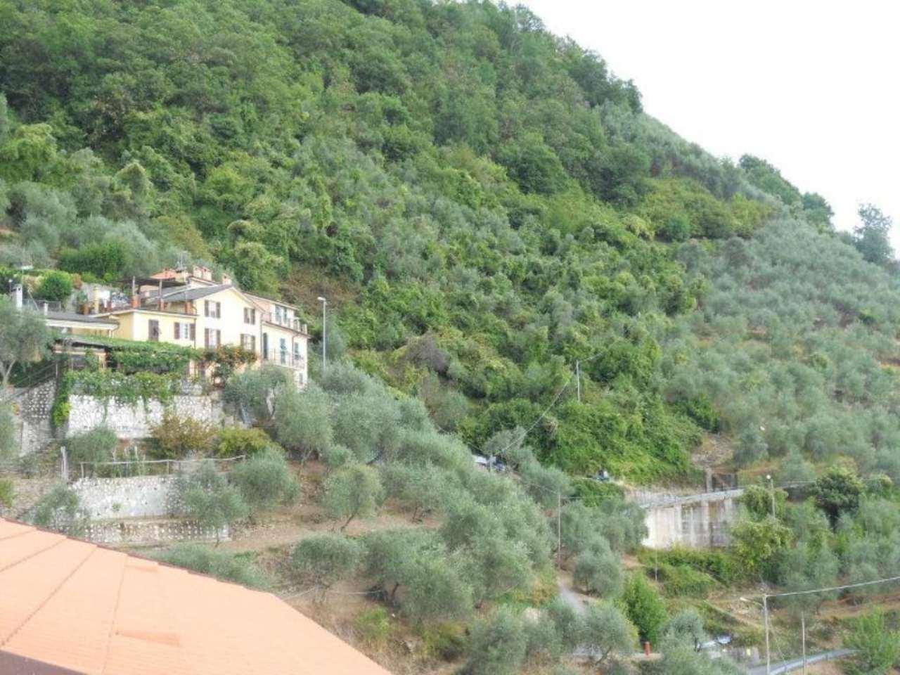 Terreno Edificabile Residenziale in vendita a Carasco, 9999 locali, prezzo € 50.000 | CambioCasa.it