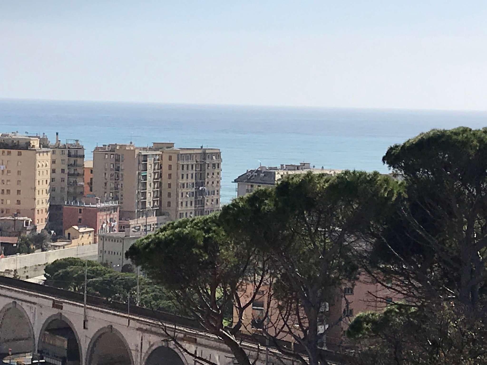 Foto 1 di Appartamento VIA ITALO D'ERAMO, Genova (zona Boccadasse-Sturla)
