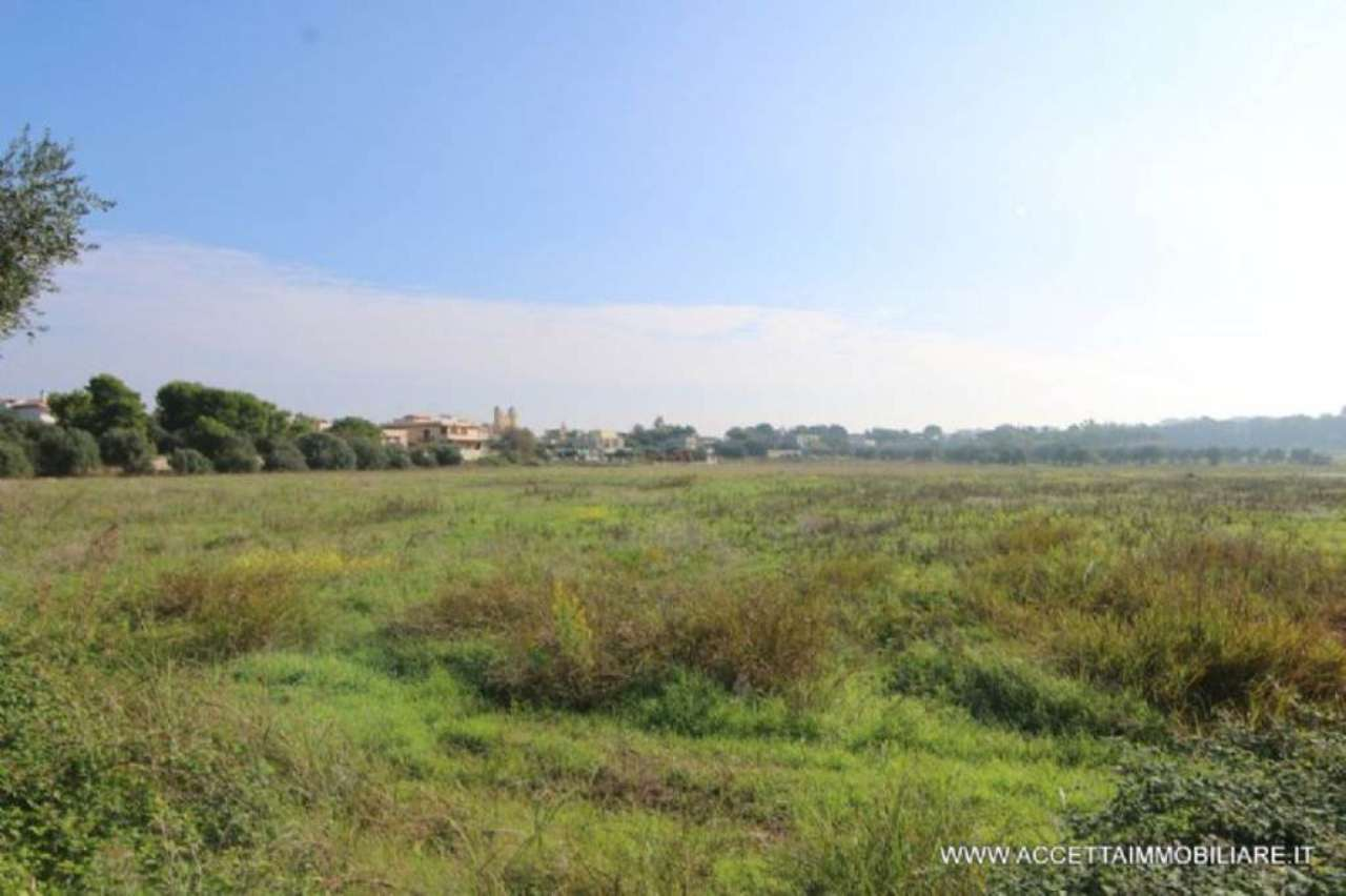Terreno Agricolo in Vendita a Taranto