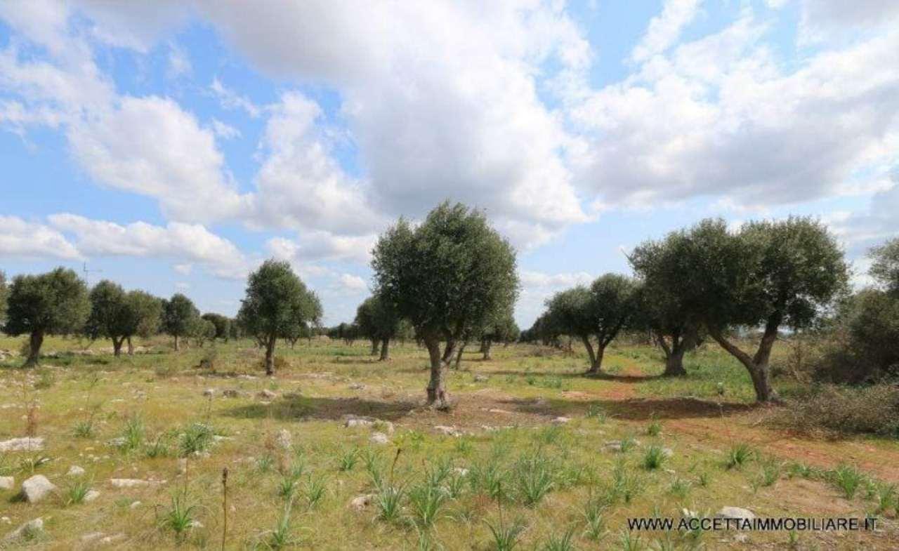 Terreno Agricolo in vendita a Faggiano, 9999 locali, prezzo € 25.000 | Cambio Casa.it