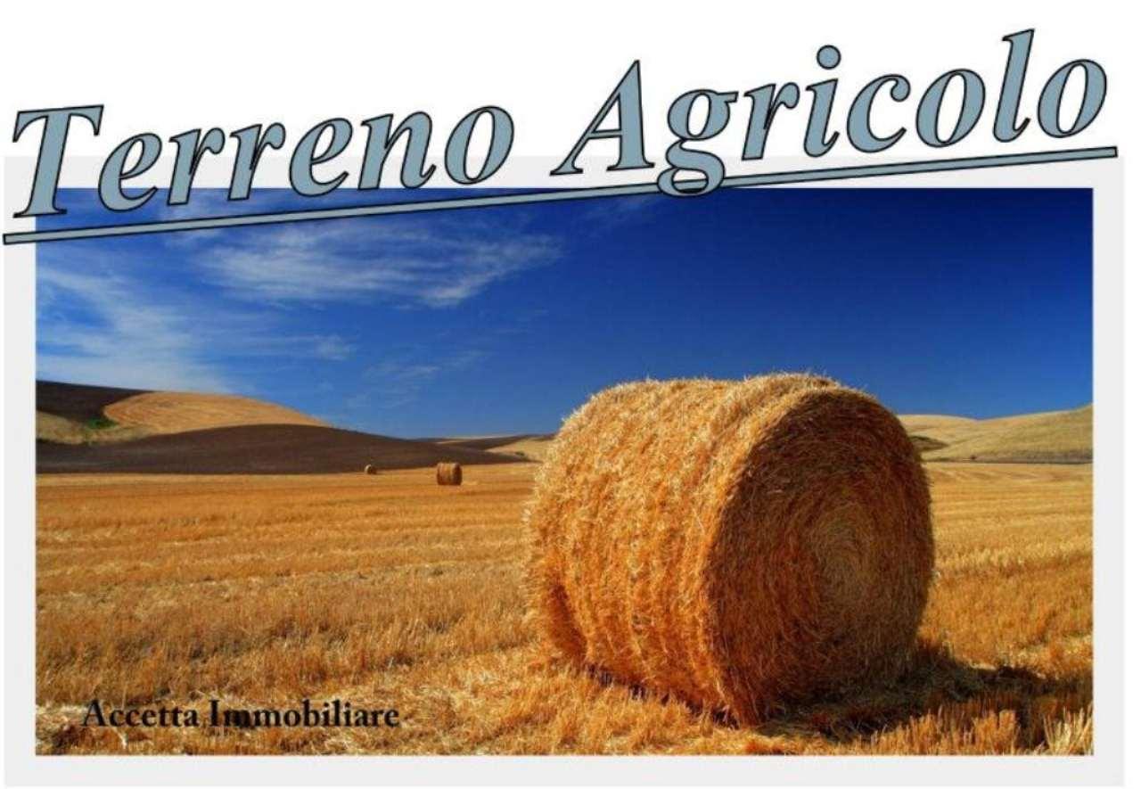 Terreno Agricolo in vendita a Statte, 9999 locali, prezzo € 8.000 | Cambio Casa.it