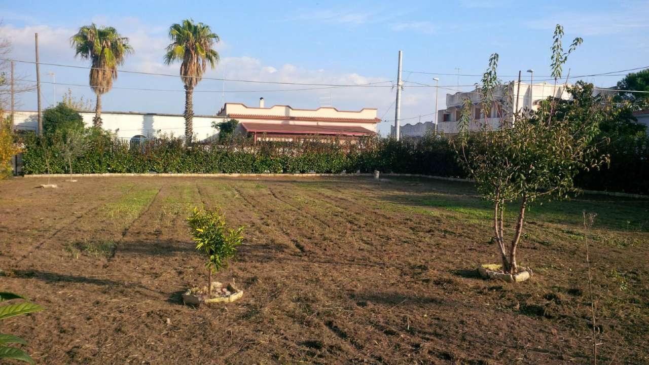 Terreno Edificabile Residenziale in Vendita a Leporano