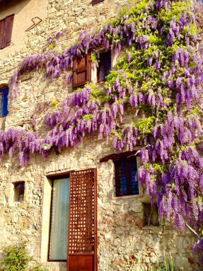 Soluzione Semindipendente in affitto a Sassuolo, 8 locali, Trattative riservate | CambioCasa.it