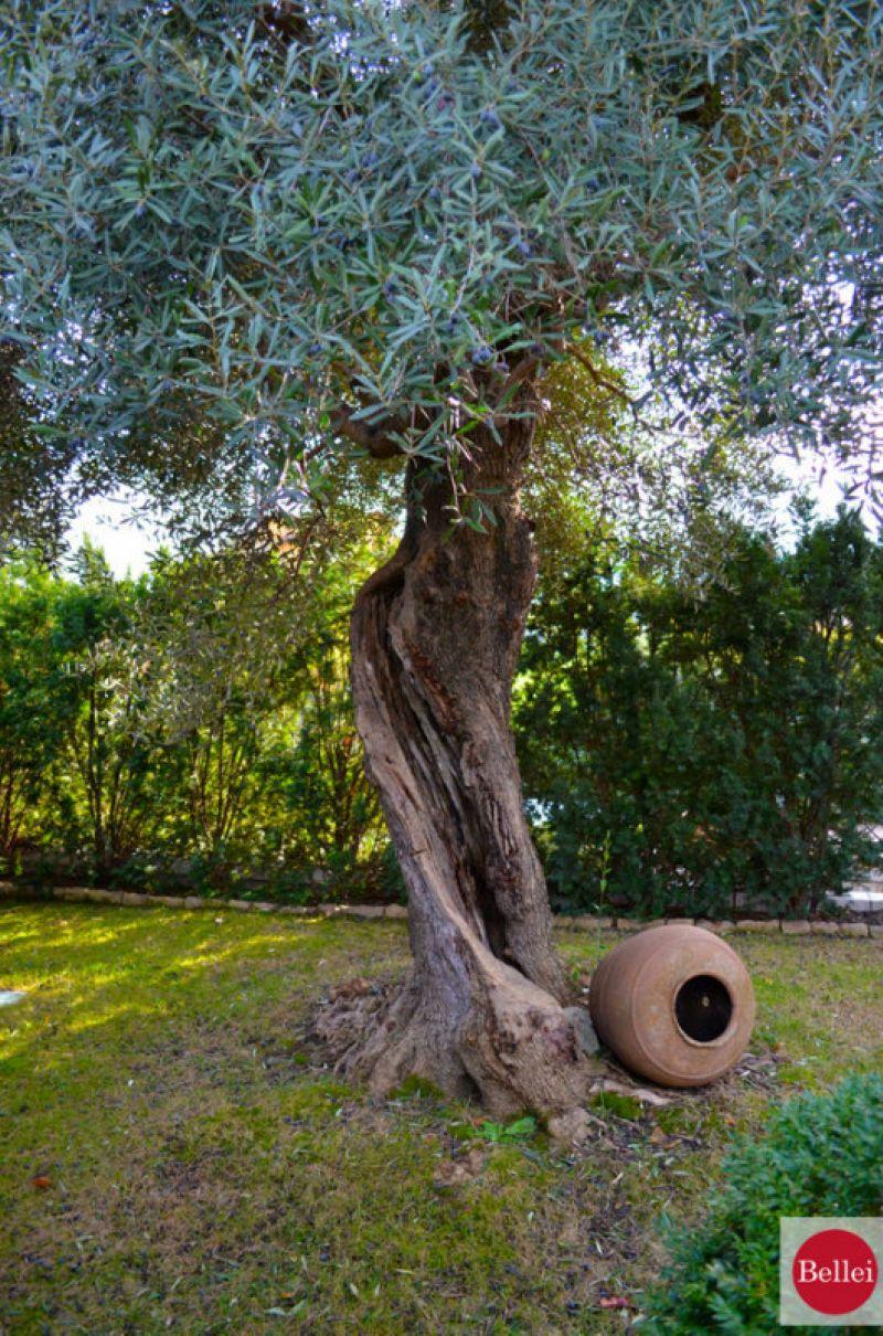 Villa in vendita a Fiorano Modenese, 15 locali, Trattative riservate | CambioCasa.it