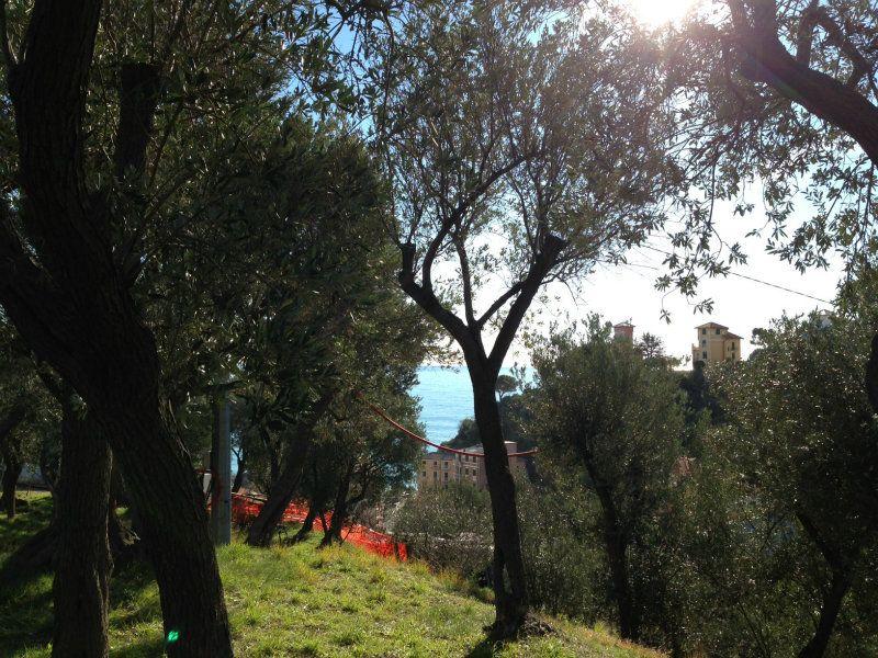 Rustico / Casale in Vendita a Celle Ligure