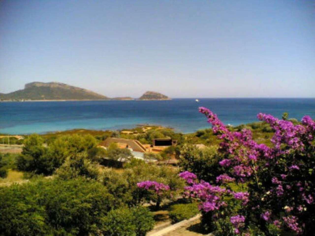 Appartamento in vendita a Golfo Aranci, 2 locali, prezzo € 180.000 | CambioCasa.it
