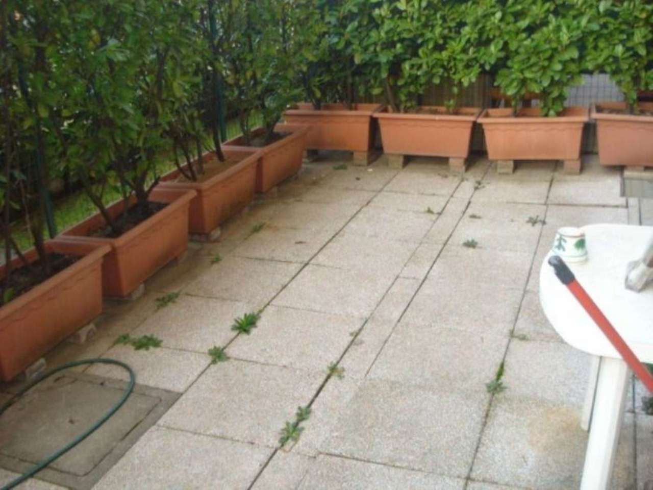 Appartamento in affitto a Caronno Pertusella, 2 locali, prezzo € 550 | Cambio Casa.it
