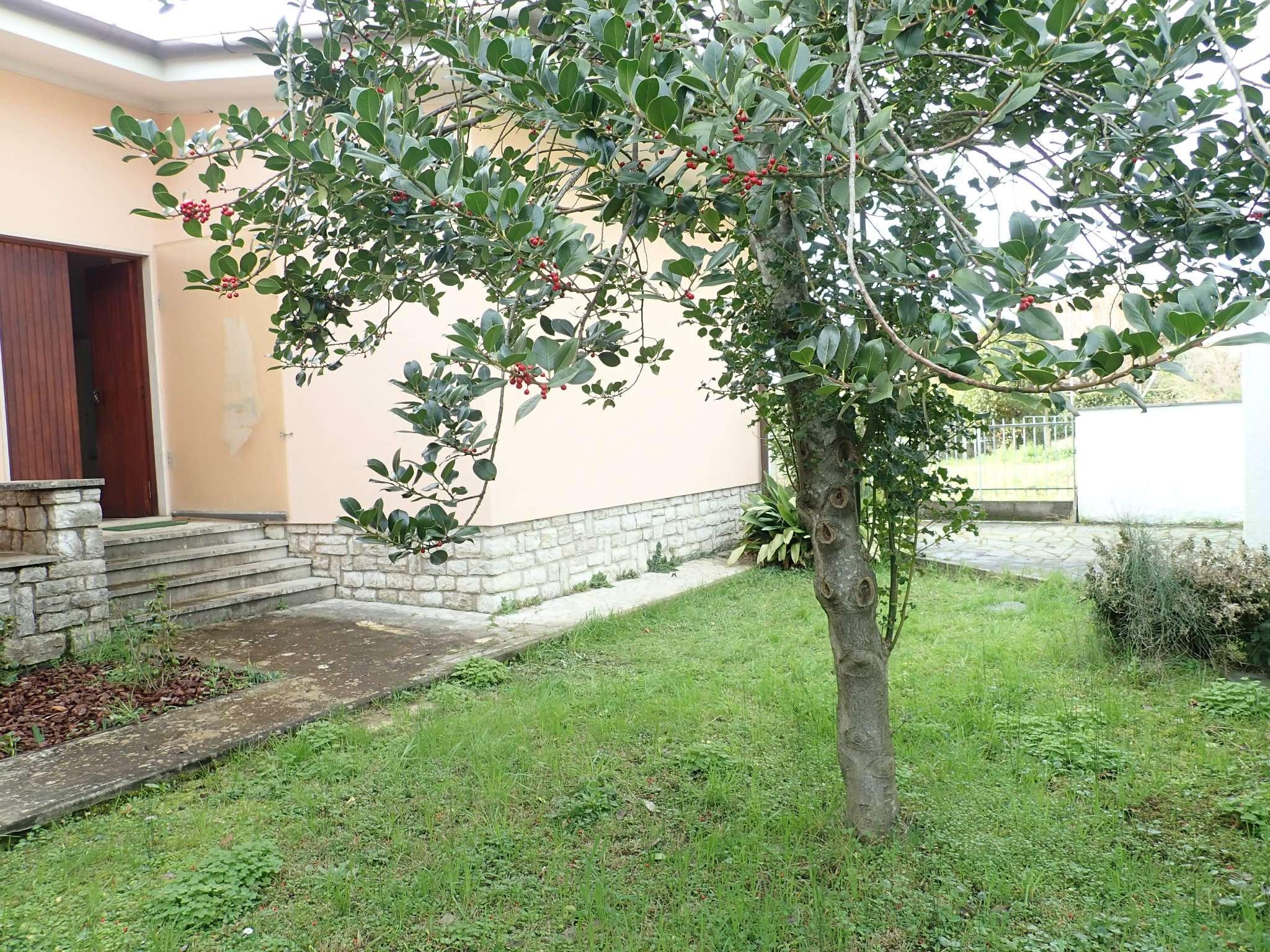 Villa in Vendita a Forte Dei Marmi: 5 locali, 200 mq - Foto 6