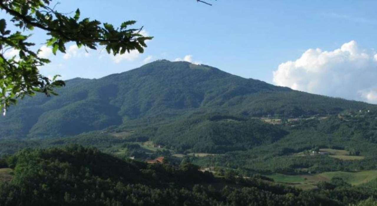 Soluzione Indipendente in vendita a Borgo Val di Taro, 13 locali, Trattative riservate | Cambio Casa.it