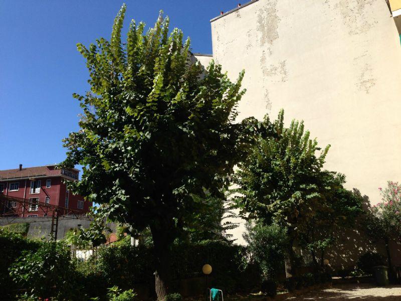 Bilocale Milano Via Tertullliano 5