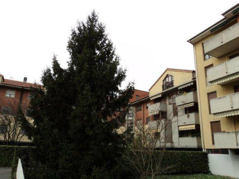 Bilocale San Giuliano Milanese Via Settembrini 12