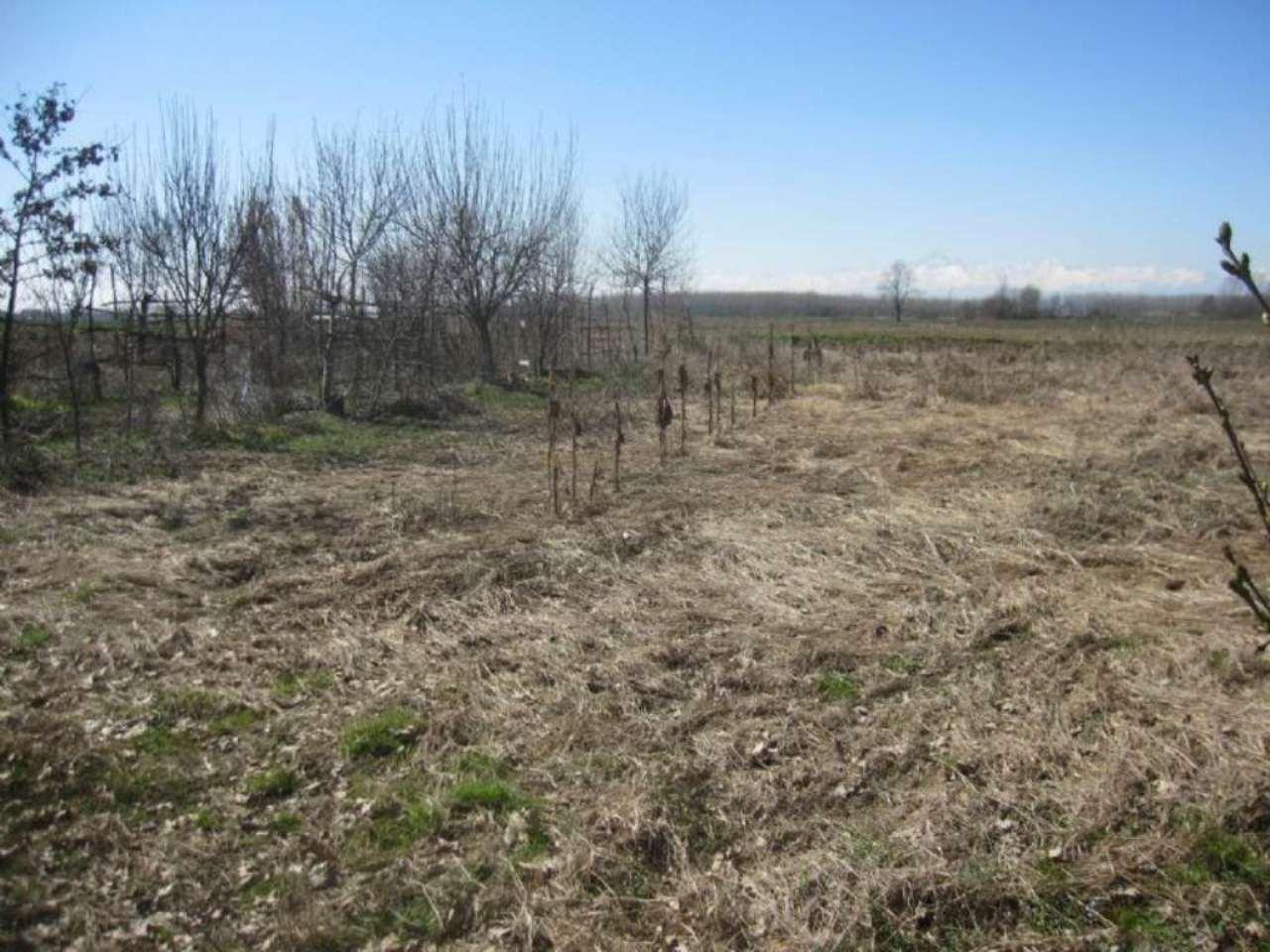 Terreno in vendita indirizzo su richiesta Carignano