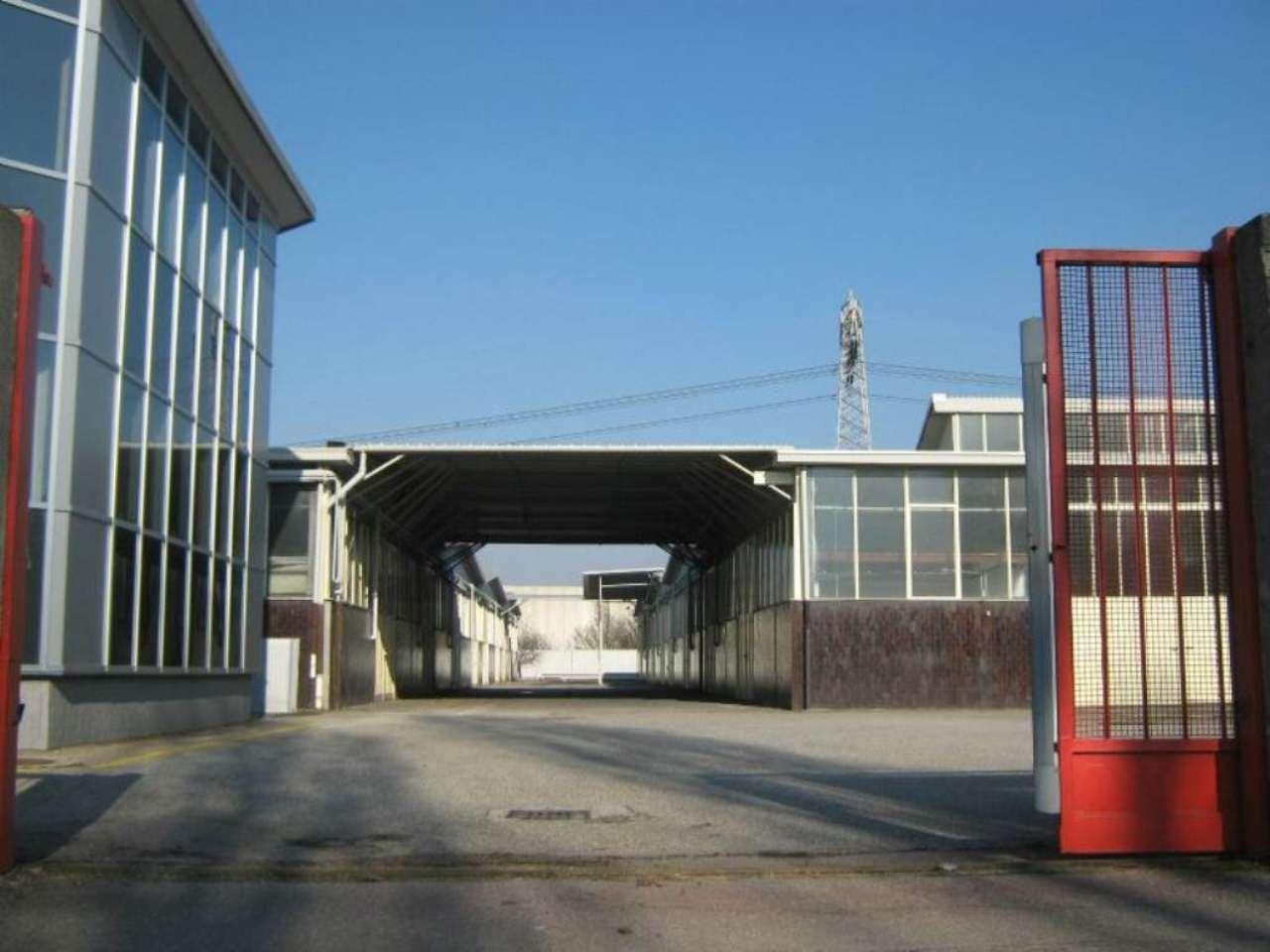 Trezzano sul Naviglio Affitto CAPANNONE Immagine 4