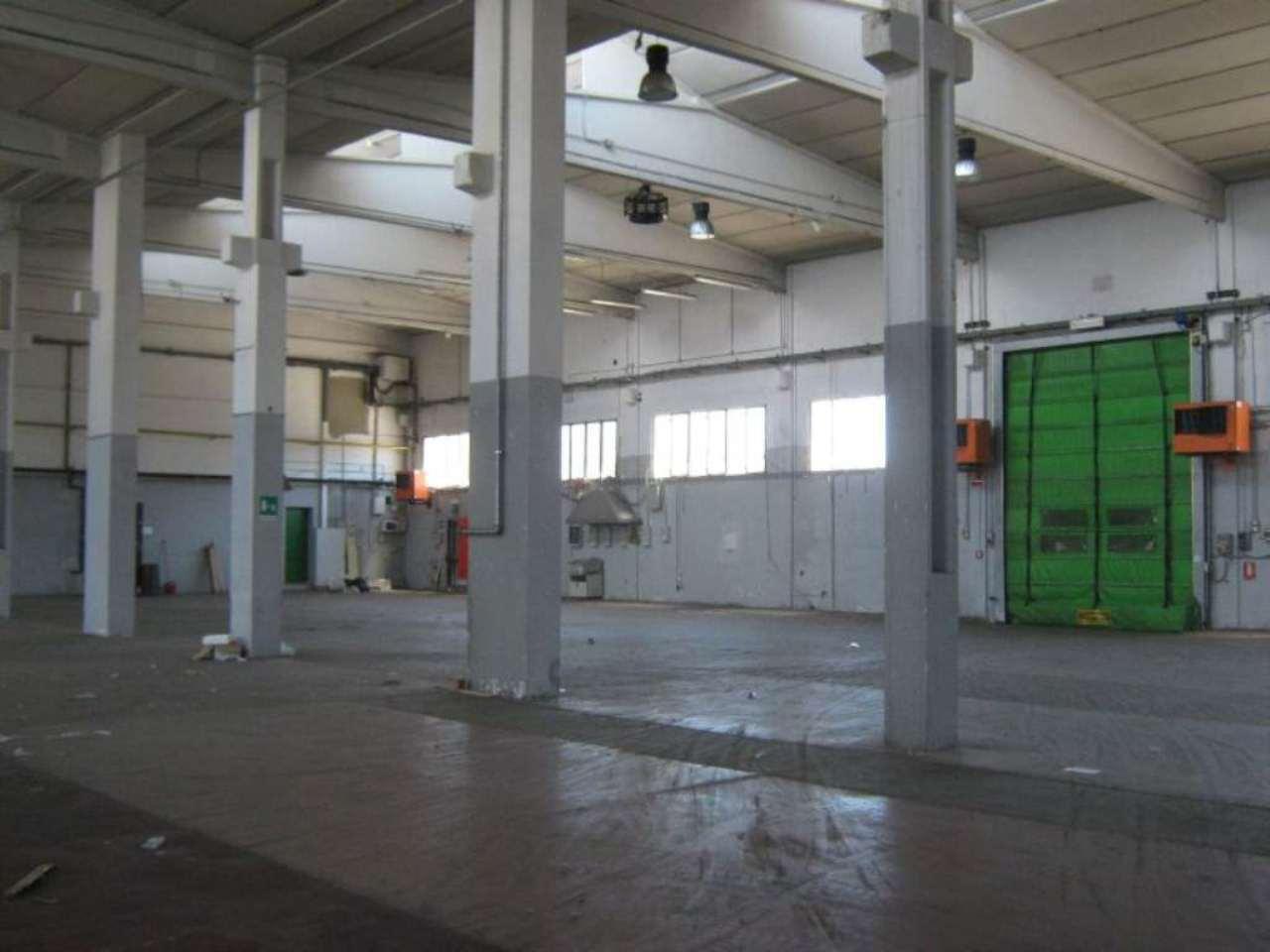 San Giuliano Milanese Affitto CAPANNONE Immagine 1
