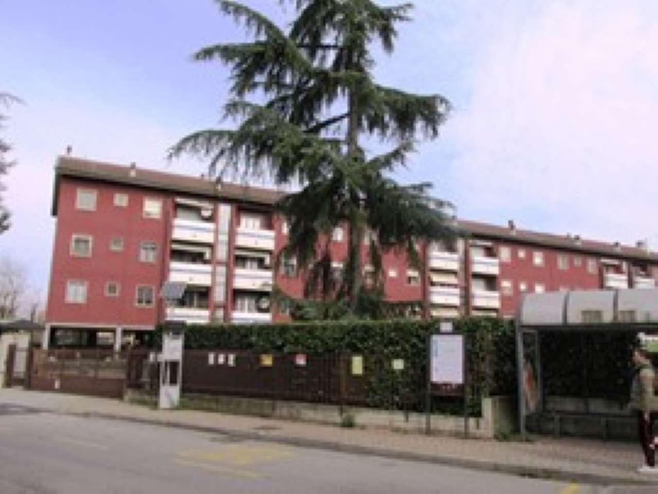 Appartamento in Affitto a Rodano: 3 locali, 80 mq