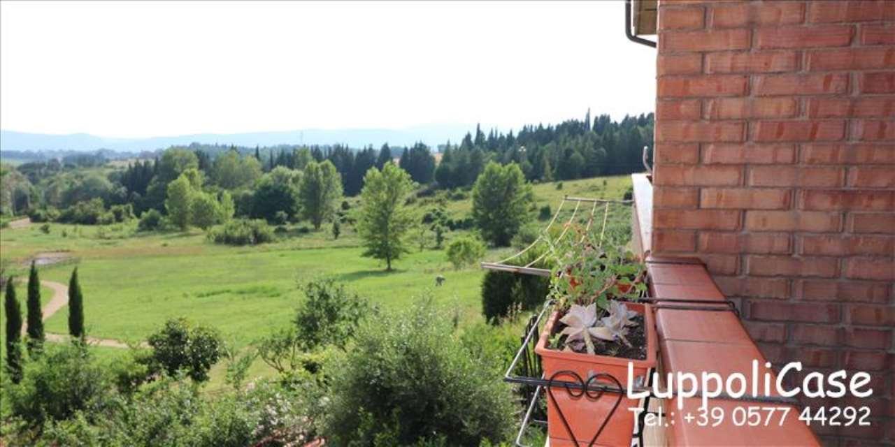Appartamento quadrilocale in vendita a Siena (SI)