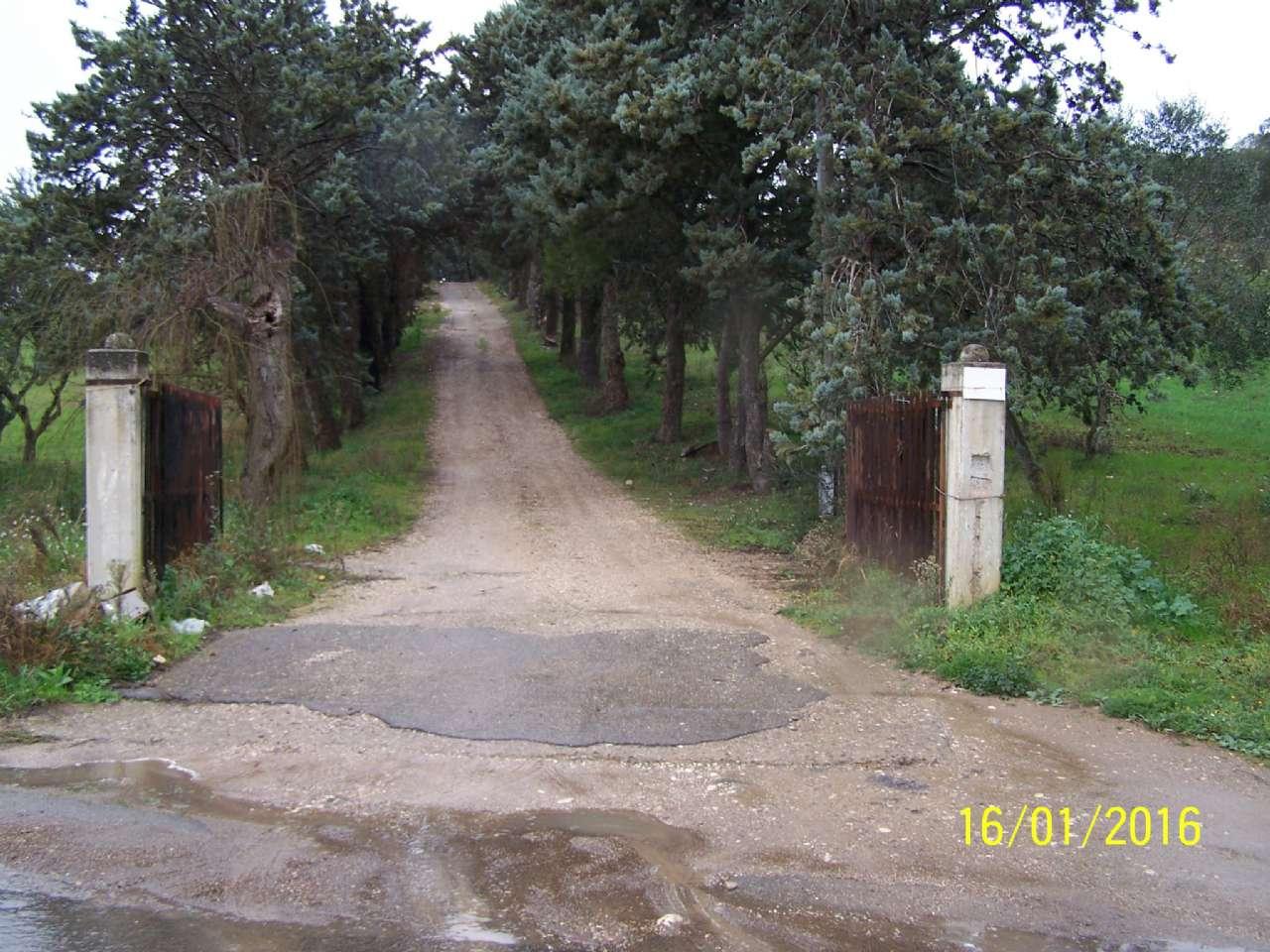 Villa Tri-Quadrifamiliare in Vendita a Ginosa