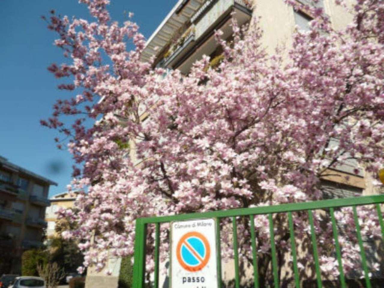 Bilocale Milano Via Fonzaso 1