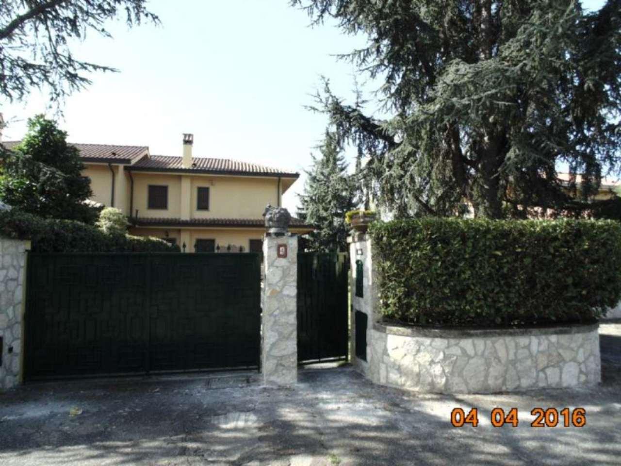 Villa Bifamiliare in Affitto a Grottaferrata