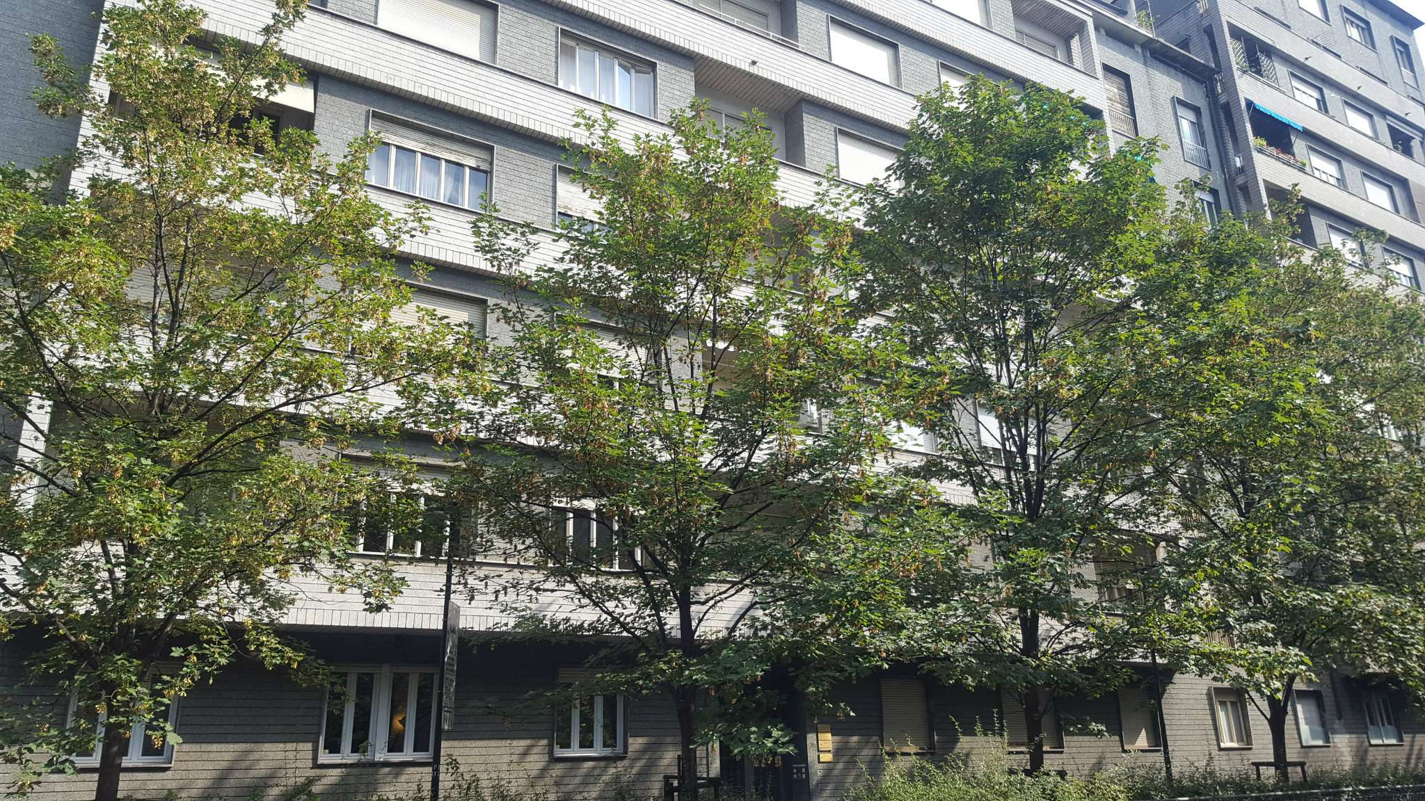 Appartamento in affitto Zona Crocetta, San Secondo - via Giuseppe Peano 11 Torino