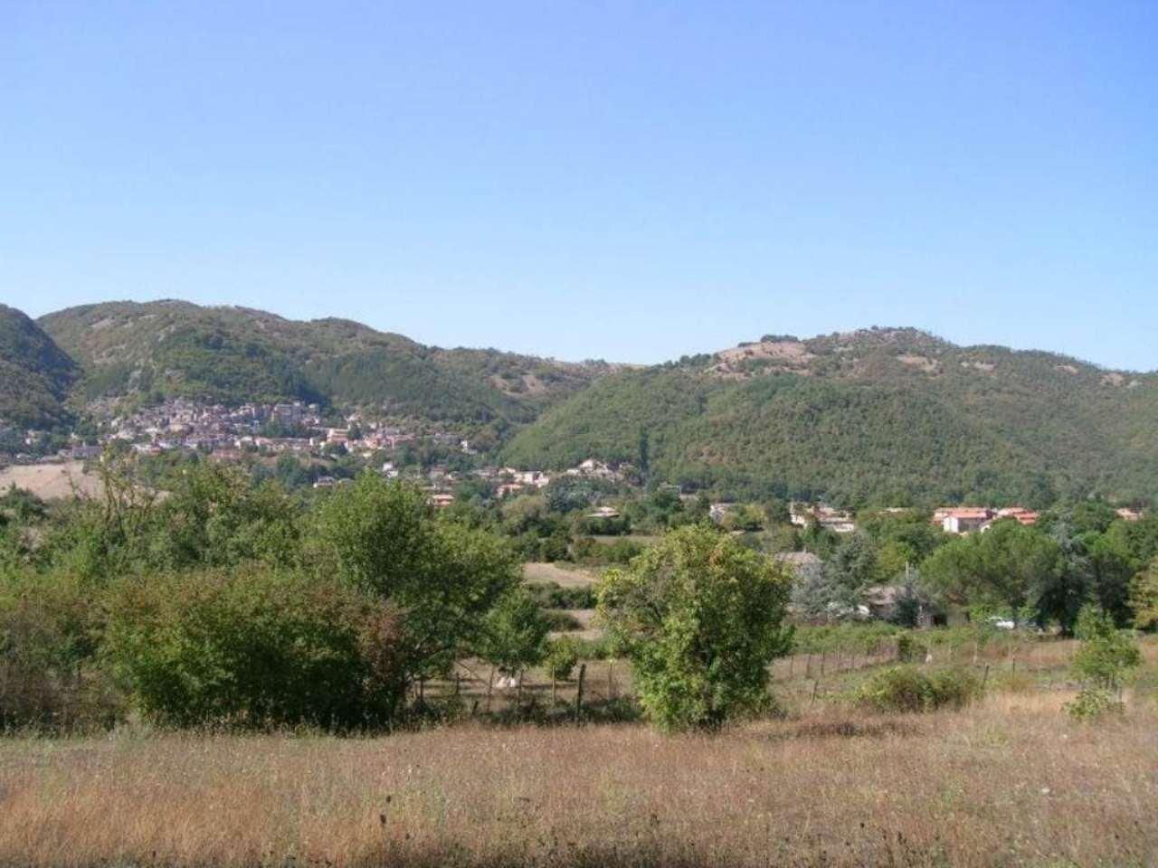 Rocca di Botte Vendita APPARTAMENTO Immagine 4