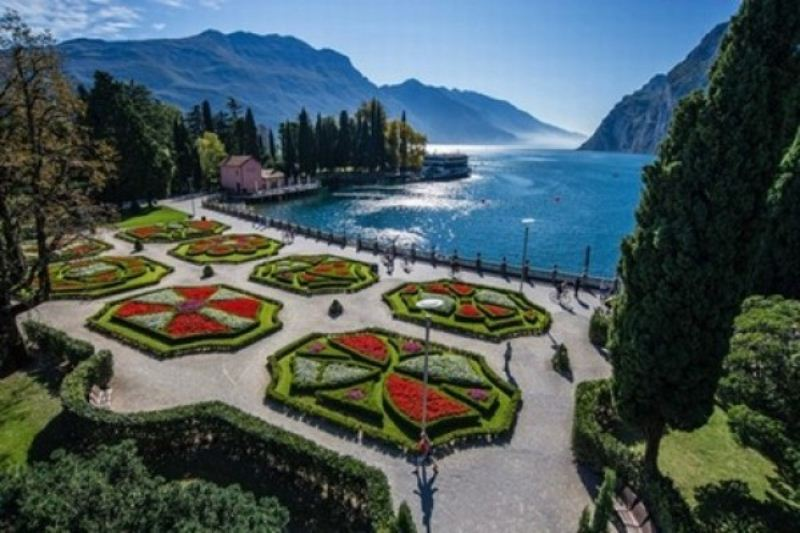 Plants Lake Garda