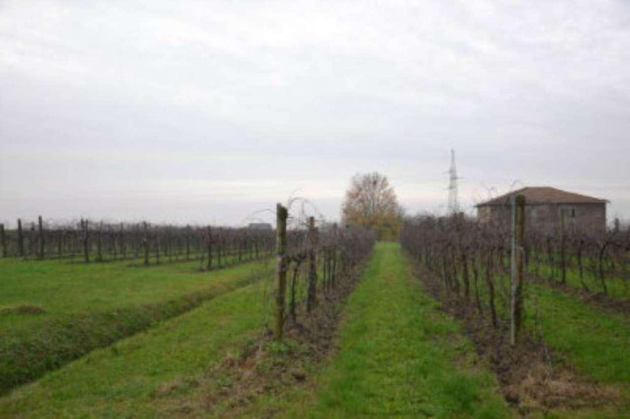 Terreno Agricolo in vendita a Bastiglia, 9999 locali, prezzo € 600.000 | Cambio Casa.it