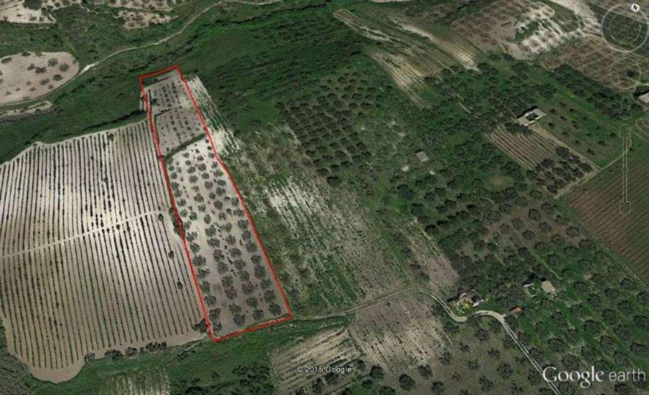 Terreno Agricolo in vendita a Castelvetrano, 9999 locali, prezzo € 12.000 | Cambio Casa.it