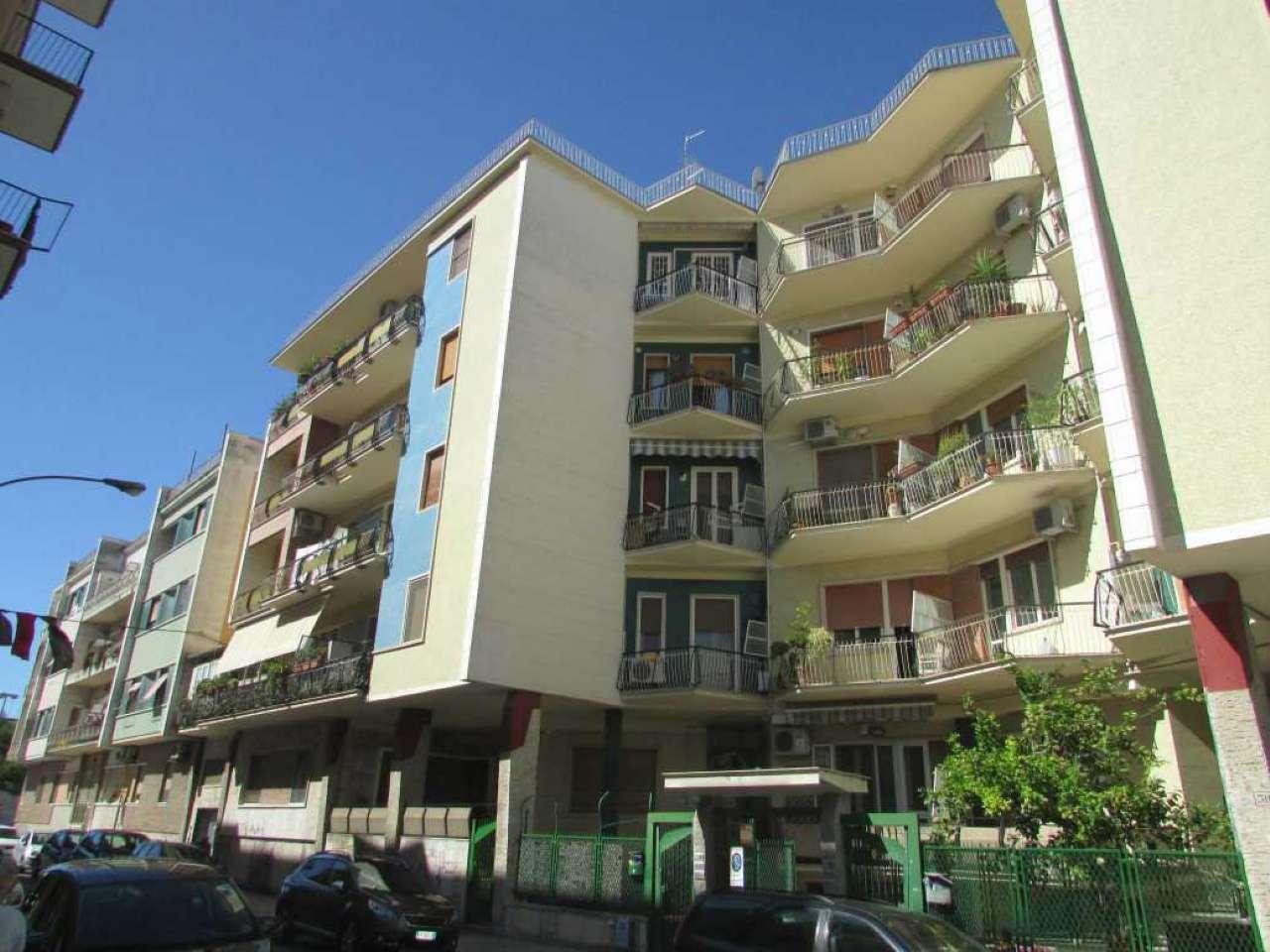 Appartamento 5 locali in affitto a Foggia (FG)
