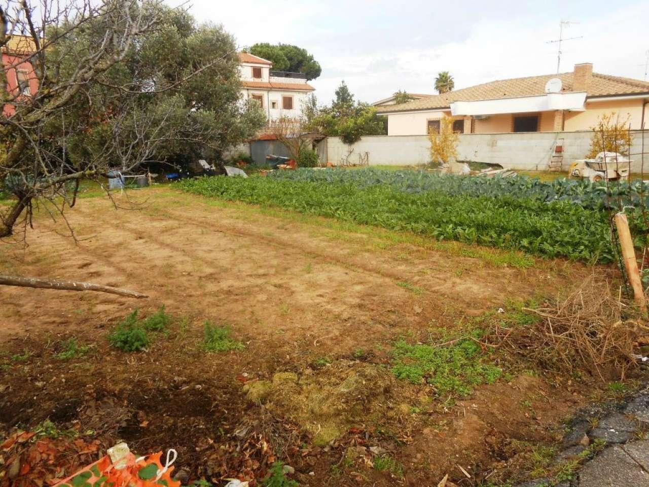 Terreno Edificabile Residenziale in vendita a Anzio, 9999 locali, prezzo € 85.000 | CambioCasa.it