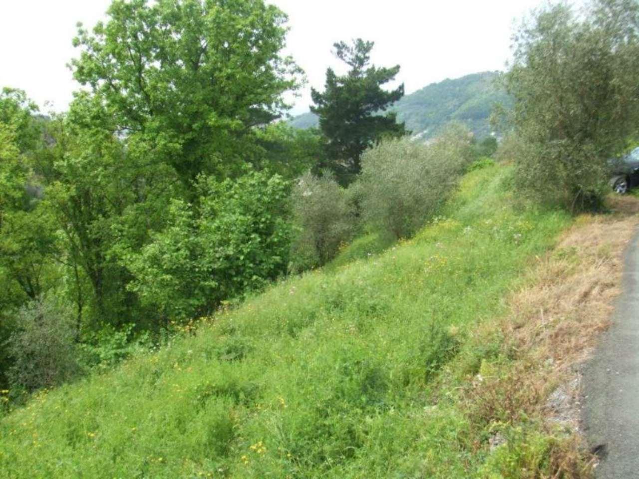 Terreno Edificabile Residenziale in vendita a Cogorno, 9999 locali, prezzo € 185.000 | Cambio Casa.it