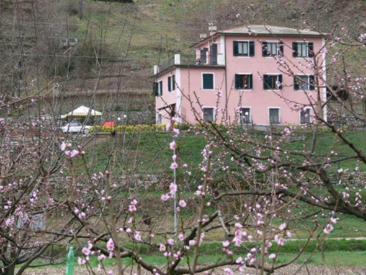 Villa Tri-Quadrifamiliare in Vendita a Leivi