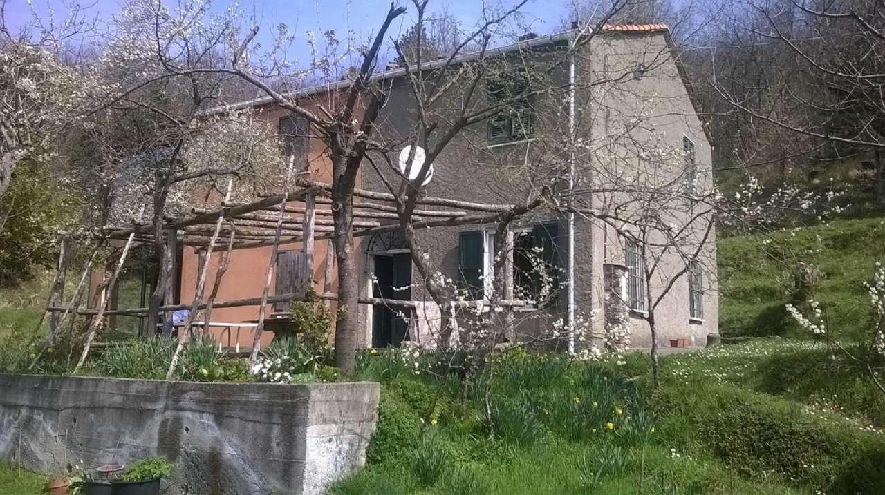 Altro in Vendita a Castiglione Chiavarese