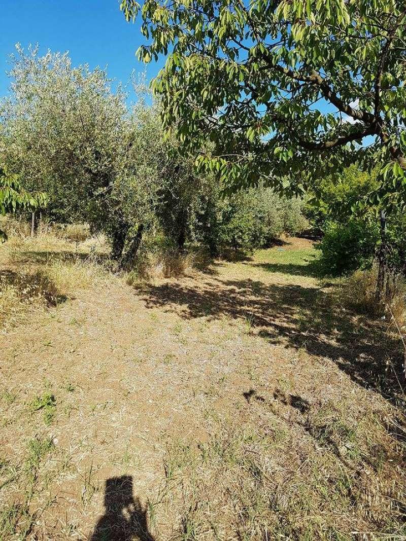 Terreno Agricolo in vendita a Montelibretti, 9999 locali, prezzo € 25.000 | CambioCasa.it