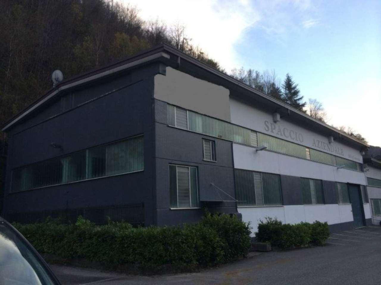 Capannone in vendita a Camerata Cornello, 33 locali, prezzo € 400.000 | CambioCasa.it