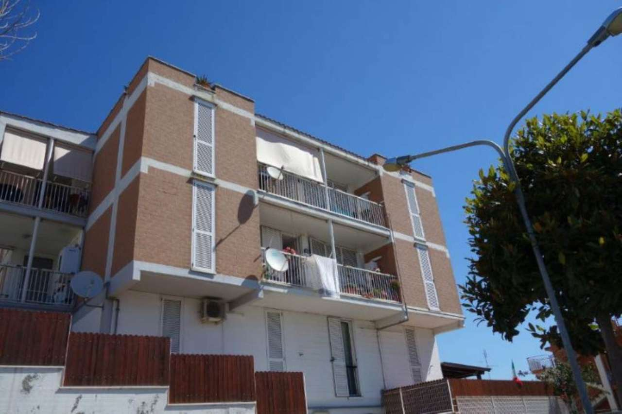 Bilocale Santa Marinella Via Delle Azalee 1