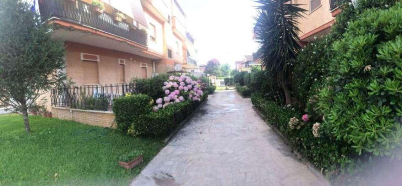 Bilocale Anzio Via Guido Cavalcanti 6
