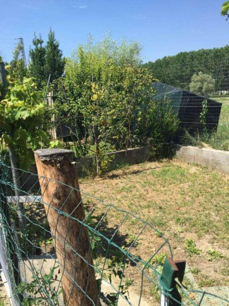 Bilocale Guidizzolo Via Sajore 13