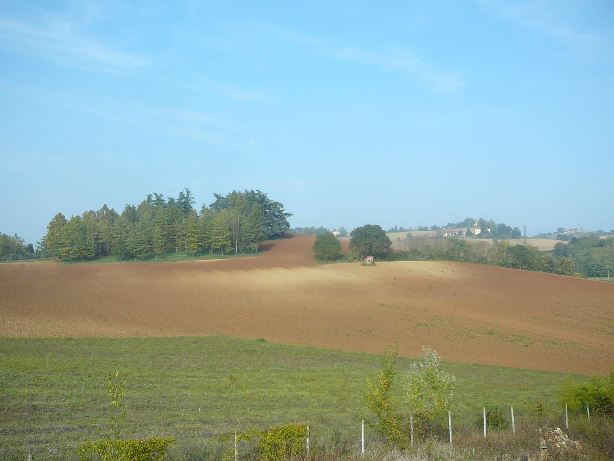Bilocale Alessandria Via Valmigliaro 8