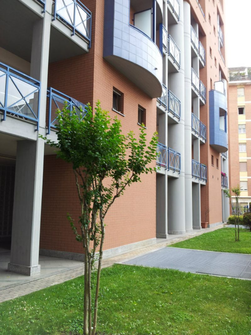 Bilocale Torino Strada Del Fortino 1