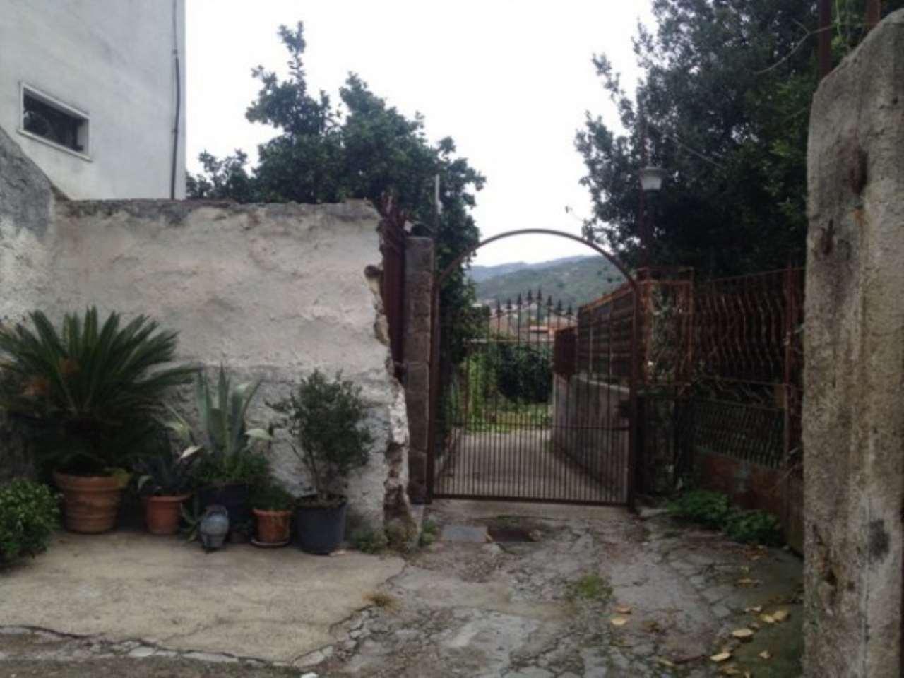 Palma Campania Vendita APPARTAMENTO Immagine 4