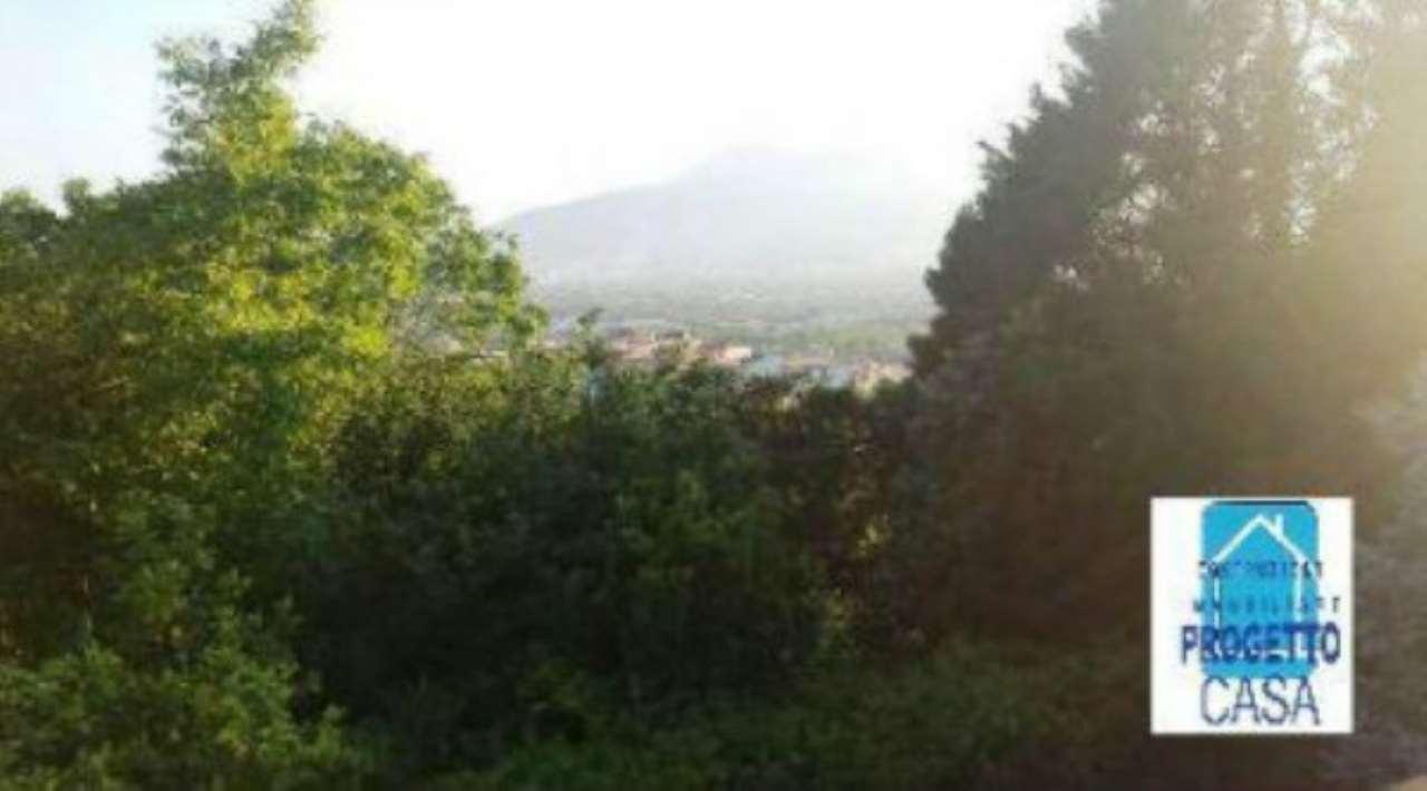 Palma Campania Vendita ATTIVITA' COMMERICIALI Immagine 3