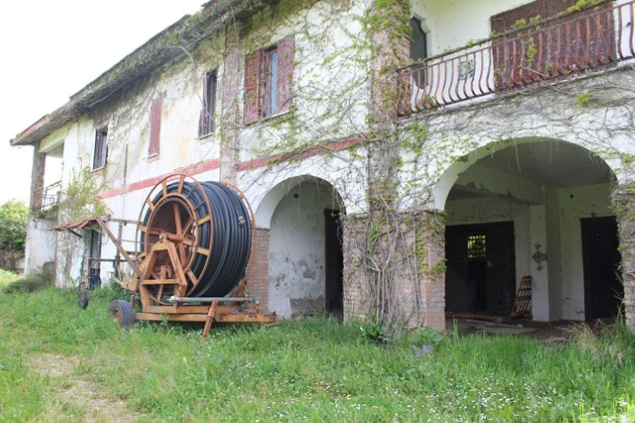 Castelforte Vendita TEMPO LIBERO Immagine 2