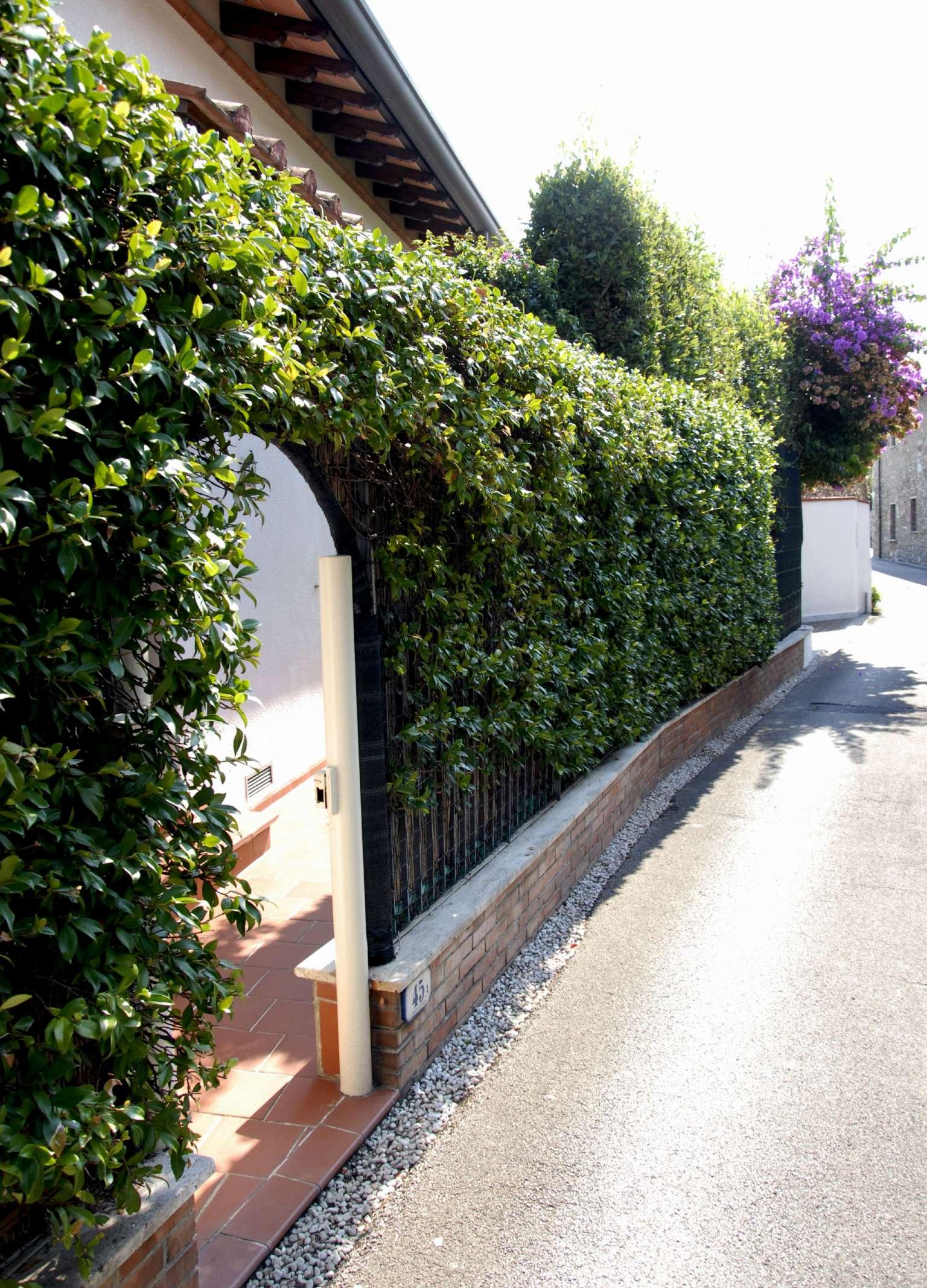 Villa in Vendita a Forte Dei Marmi via duca d'aosta