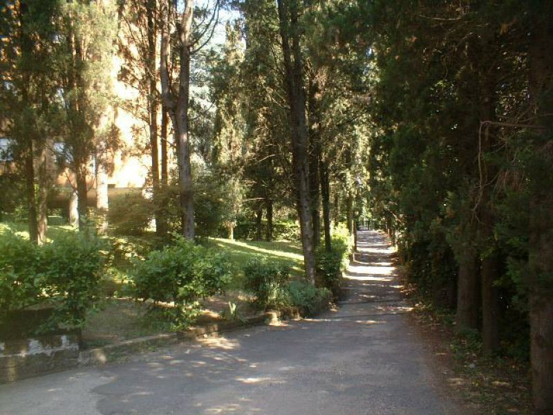 Via di Isola Farnese a