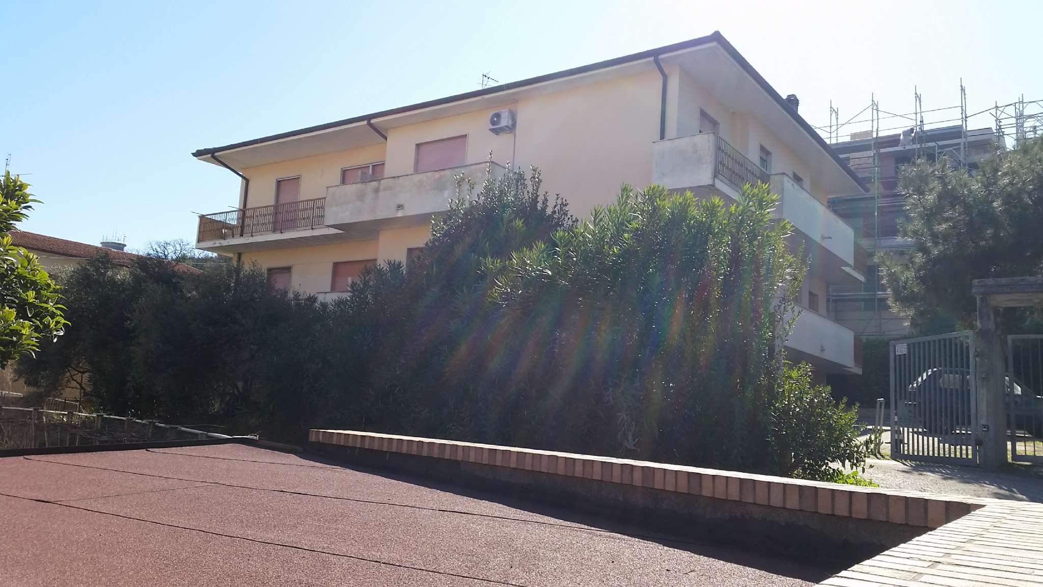 Appartamento, porta nuova, Affitto - Pescara (Pescara)