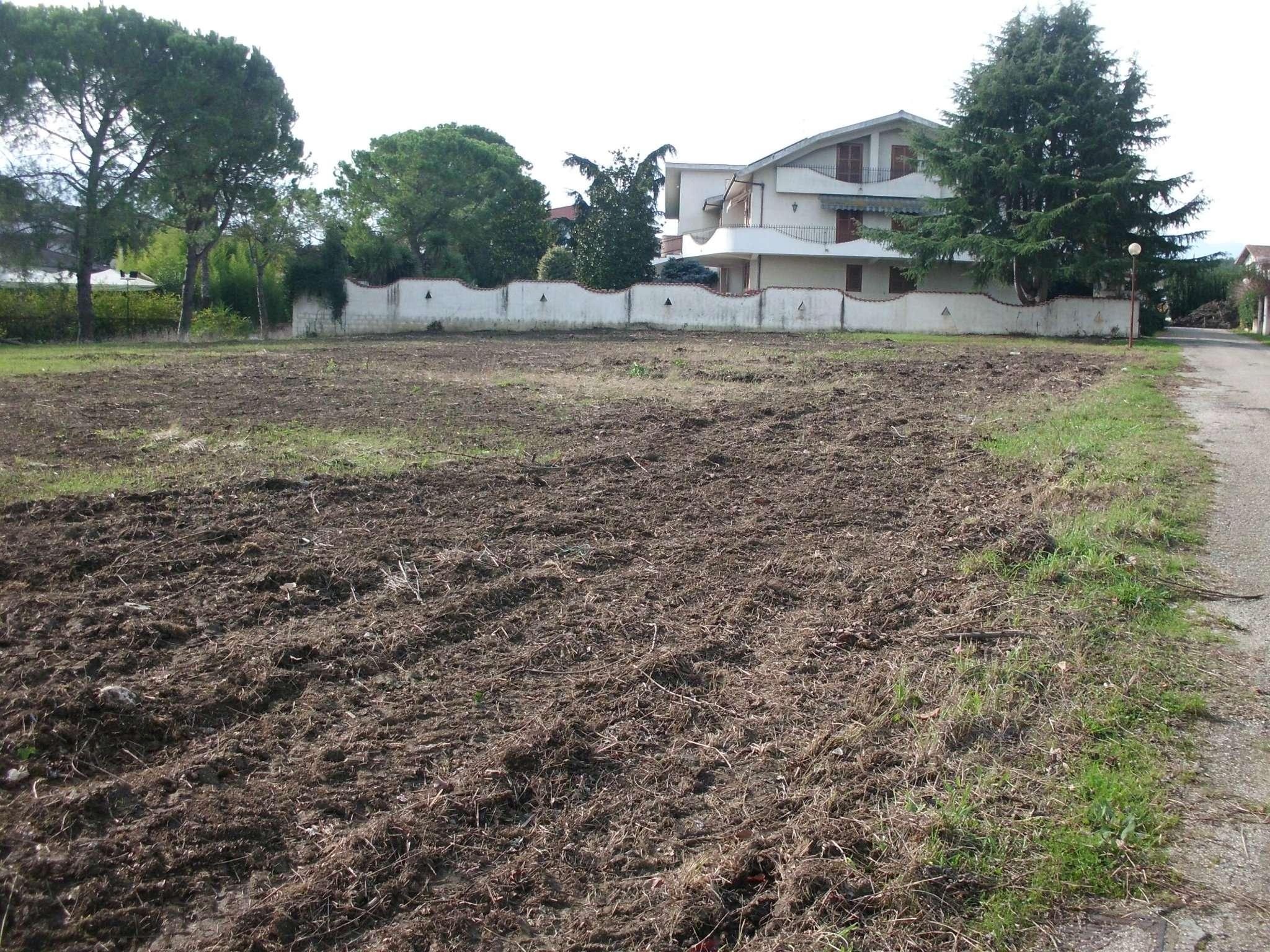Terreno Edificabile Residenziale in Vendita a Collecorvino